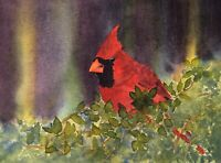Classic Cardinal, Original Watercolor Painting, Matted, Signed & Framed