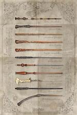 Harry Potter Poster The Wand Chooses The Wizard 61 x 91,5 cm