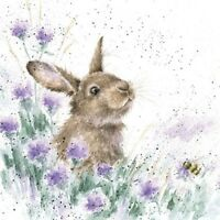 Rabbit Blank Birthday Greeting Card – The Meadow by Wrendale Designs