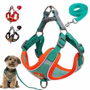 Mesh Dog Harness & Lead for Medium Dogs No Pull Reflective Step-in Walking Vest