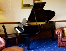 More details for bluthner grand piano 6' 3