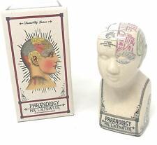 Temerity Jones Porcelain Crackle Phrenology Head Mr L. N. Fowler Inspired Gift