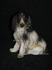 +# A015821_09 Goebel Archiv Muster Hund Dog Cocker Spaniel TMK6 Plombe Matt