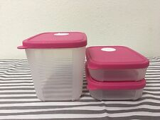 Tupperware Freezer Mates w/ Date Dial Set Of 3 Sheer w/ Pink Seals 4, 1 Cups New