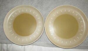 2 x DENBY ODE DINNER PLATES