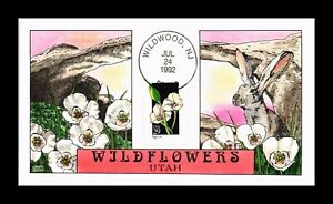 DR JIM STAMPS US COLLINS HAND COLORED FDC SEGO LILY WILDFLOWERS UTAH SCOTT 2667