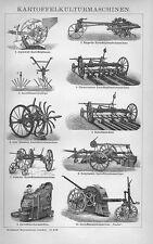 Kartoffelerntemaschinen Kartoffelernte Kartoffelkulturmaschinen Holzstich  1895