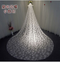 Sparkly Bling Bling Wedding Bridal Veils Long Cathedral Length 350cm*300cm+Comb