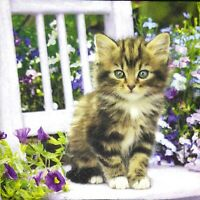 3 x Single Paper Napkins For Decoupage Craft Cat Kitten Purple Flowers M391