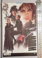Alex Ross Black Widow RARE Print Advertisement