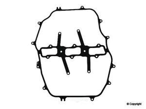 Fuel Injection Plenum Gasket-Stone Upper WD Express 223 38020 368