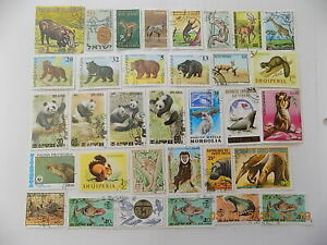 World Wide Topical Coll'n of used WILD ANIMAL stamps off paper-3-1