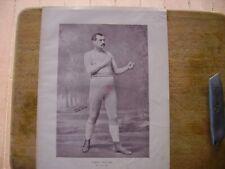 1896 Vintage Boxing Print : Steve Taylor
