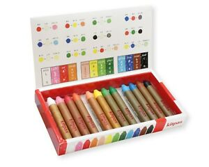 Kitpas Medium Crayon Set of 12 Colours - Glass & Window Crayons - Easy to Wipe
