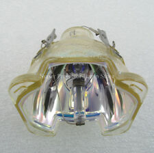 Projector Bare Bulb EC.J2901.001 for ACER PD726/PD726W/PW730/PD727/PD727W
