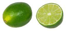 Lime 8oz Fruit Powder Freeze Dried Citrus  Vitamin C Phytos PURO BRAZIL Non GMO