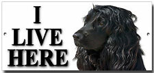 ENGLISH COCKER SPANIEL,I LIVE HERE METAL SIGN,DOG BREEDS,SECURITY DOG SIGN.