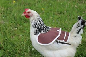 Chicken Poultry Hen Saddle BASIC PLUS WING PROTECTION 2 IN 1 Waterproof canvas