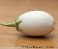 🔥 🍆 Aubergine white bell rund weiß Auberginen 10 frische Samen Balkon Kübel