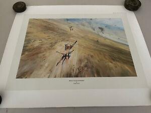 Robert Taylor Aircraft print 'Bekka Valley Gunfight'