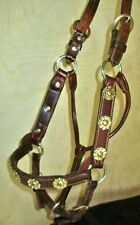 Silver Concho Show Halter -Nice Quality leather, Adjustable Horse-