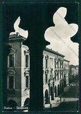 Padova Città Università Foto FG cartolina VK2460