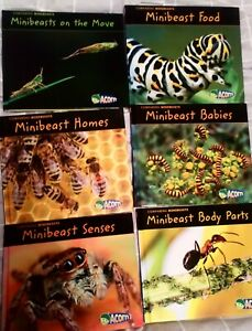 Comparing Minibeasts - Charlotte Guillain  6 six book collection - Free P&P