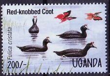 Uganda 1995 MNH, Red-knobbed Coot, Water Birds   -H76