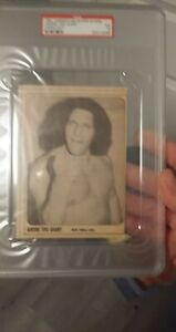 WRESTLING SUPERSTARS 1981 SUMMER MAG cut out card andre the giant psa 5 wwe wwf