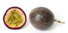 20 graines de GRENADILLE (Passiflora Edulis)K65 MARACUJA SEEDS SEMILLAS SAMEN