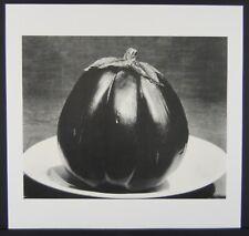 "EDWARD WESTON * ORIGINAL1987 DUOTONE LITHOGRAPH OF EGGPLANT * SIZE:  9"" X 9 1/2"""