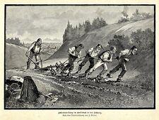 J. Weber Ackerbestellung im Entlebuch in der Schweiz Pflug Histor. Druck v. 1896