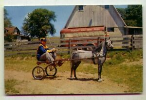 Windy Hills Roxanne Hickory Hill Pony Farm Martinsville INDIANA *SULKY 1959*