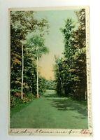 C. 1907 Champlain New York Green Drive Hotel Vintage Postcard