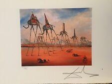Salvador Dali Litografia 50 x 65 Bfk Rives Timbro a secco Firmata a Matita D832