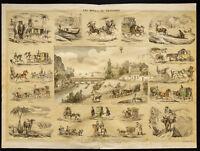 Raro 1853ca - Los medios de transporte - Placa enciclopédico, escolar