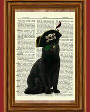 Black Cat Pirate Dictionary Curious Art Print Poster Picture Captain Eye Patch