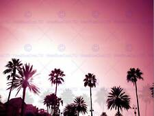 PHOTOGRAPHY COMPOSITION PALM TREES SHADOWS SILHOUETTES POSTER PRINT BMP11226