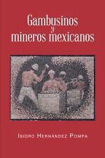 Gambusinos y Mineros Mexicanos by Isidro Hern�ndez Pompa (2013, Paperback)