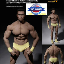 1/6 PHICEN TBLeague M34 Flexible Seamless Male Super Muscular Figure Body ❶USA❶