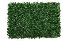 "24""L x 16""W x 1.5""H Boxwood Mat Green pack of 6"