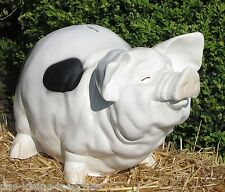 Riesiges großes Sparschwein L: 53cm Schwein Spardose Hochzeit xxl mit Lackfehler
