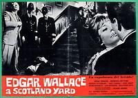 T27 Fotobusta Edgar Wallace En Scotland Yard Alfred Vohrer Klaus Kinski