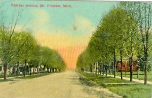 Mt Pleasant MI  Tree Lined Fancher Avenue 1912