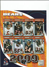 2009 CHICAGO BEARS 8X10 NFL PICTURE PHOTO