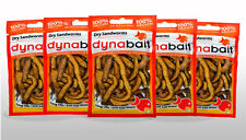 Dynabait Sand worms 5x  (dehydrated fishing tackle, bait, 2 years shelf life)