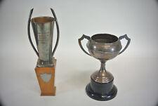2 Grands trophées de Swan à Radcot Shabby Chic PUB Man Cave Coffre Voiture