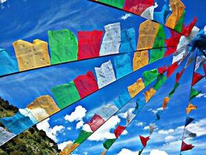 Tibetan Prayer Flag Bunting Colourful Bhuddist Indian Festival 20 Large Flag 5m
