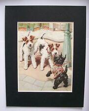 Fox Scottish Terriers Dog Print Winifred Martin Meet Greet Bookplate 1950s w/Mat