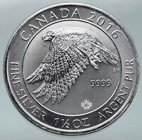 2016 CANADA UK Queen Elizabeth II SNOWY GYRFALCON 1 1/2 OZ Silver $8 Coin i87173